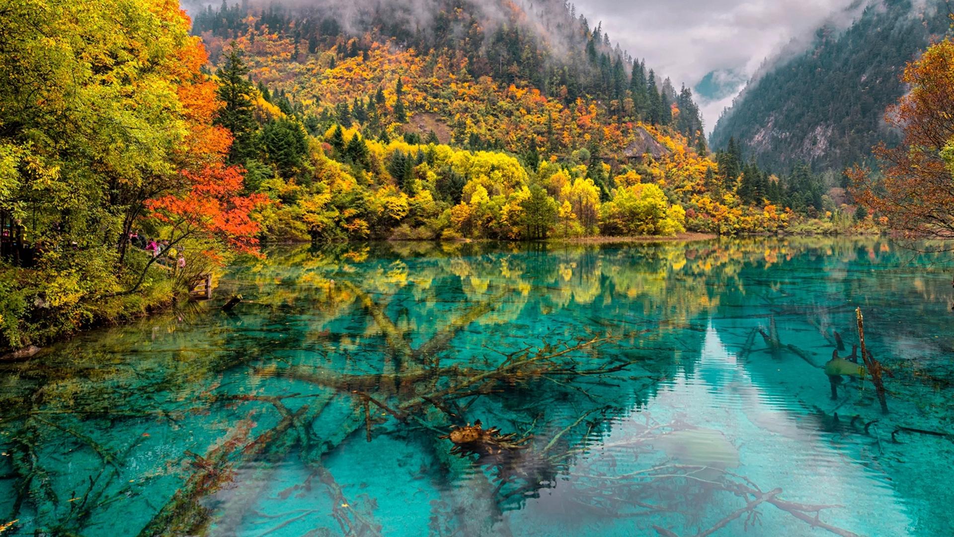 Kinh nghiệm du lịch Cửu Trại Câu | Mùa thu